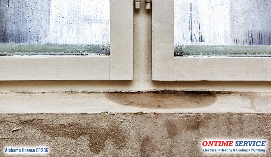 Does Your Basement Have Moisture or Humidity Problems?