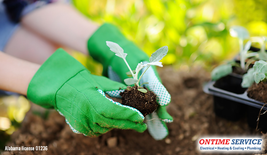 Green Gardening Tips for Energy Efficiency & Water Conservation