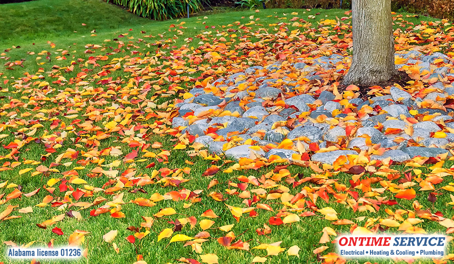 How to Protect Your Outdoor Heat Pump from Leaves and Debris