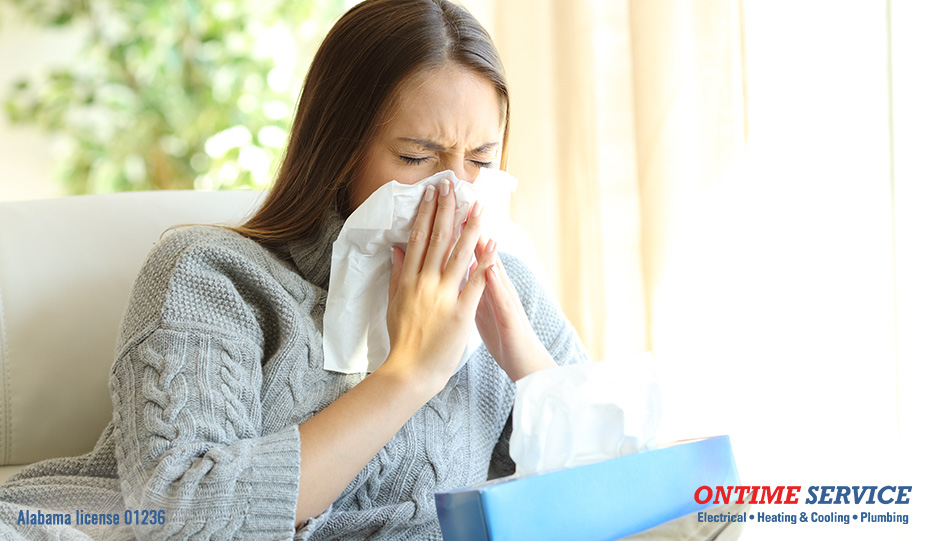 fight indoor allergies